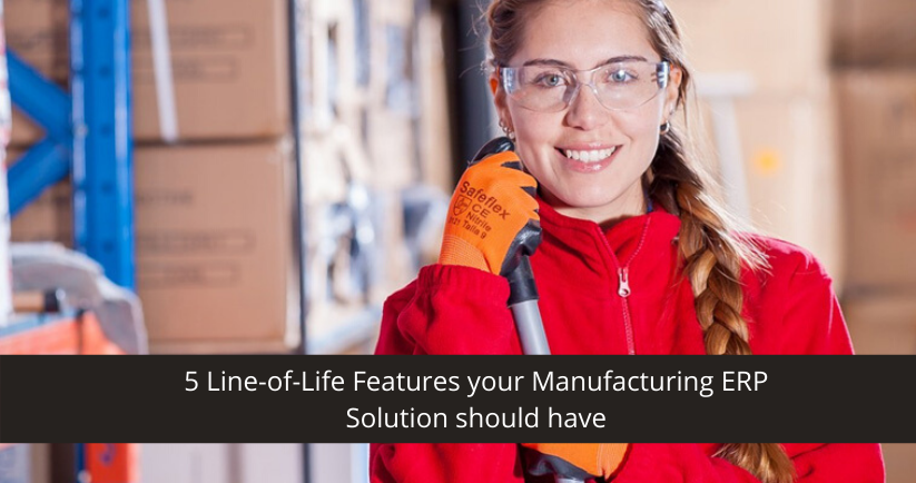 Manufacturing ERP Solution Features