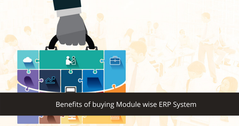 Module Wise ERP System