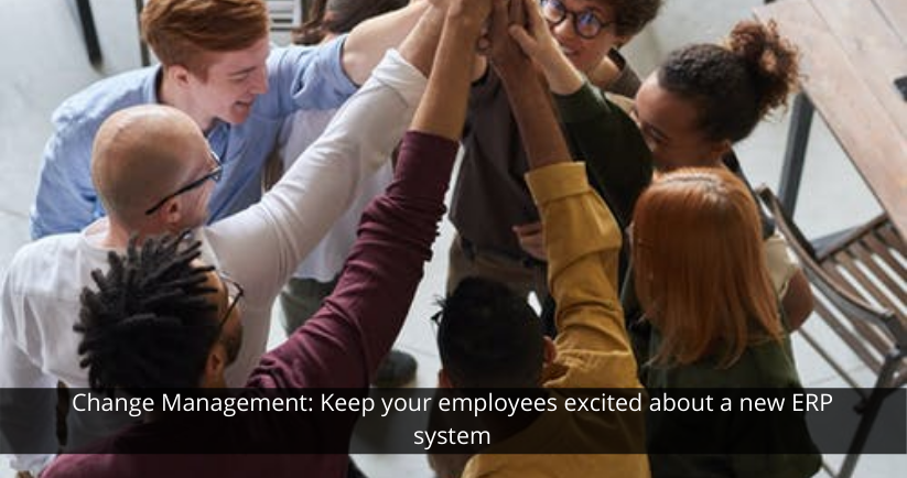 ERP System For Employees