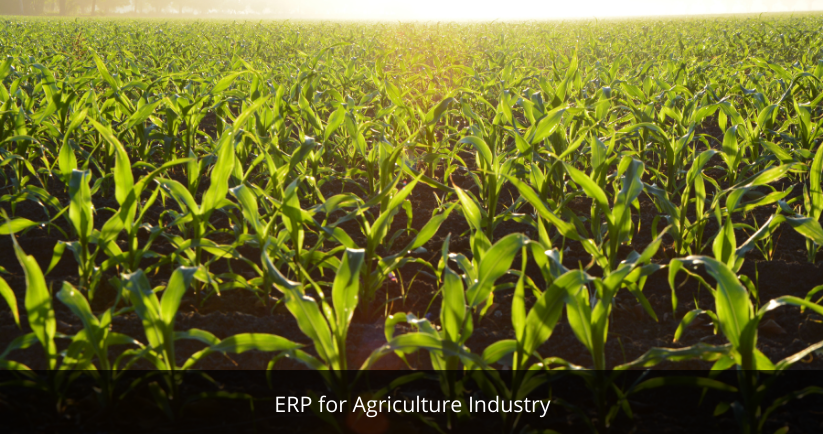 ERP for Agriculture Industry | Best ERP Software Provider