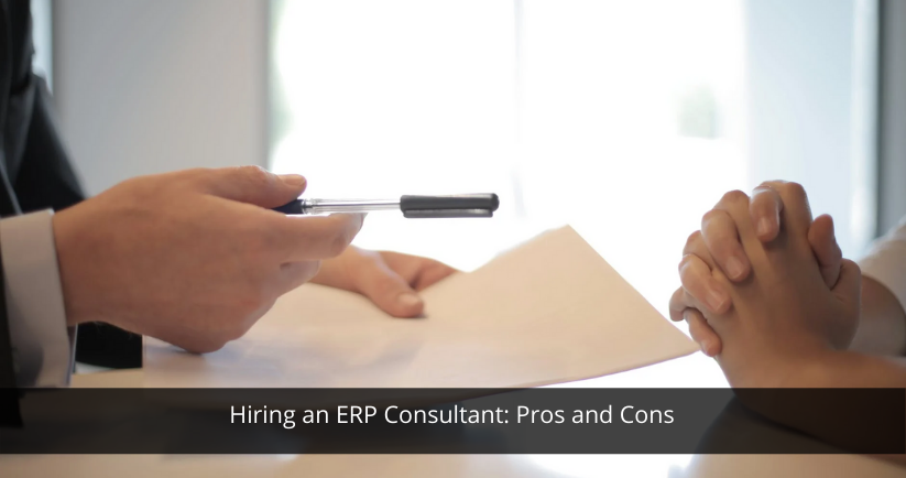 Hiring an ERP Consultant: Pros and Cons