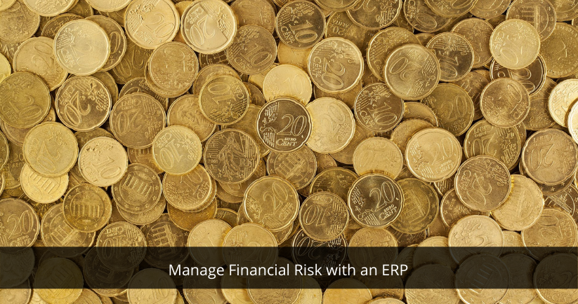 Manage Financial Risk with an ERP