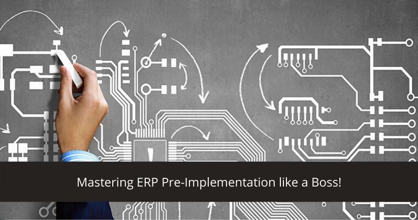 ERP Pre-Implementation
