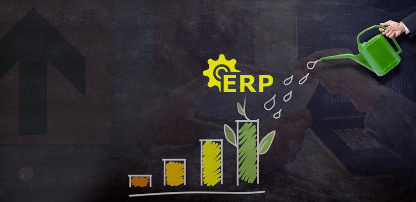 How-can-ERP-applications-help-financial-services-firms-drive-sustainable-growth